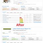 gtmetrix speed optimization and cdn 1