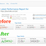 gtmetrix speed optimization and cdn 2